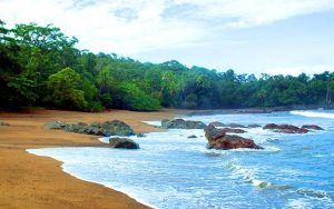 Carate Beach Costa Rica